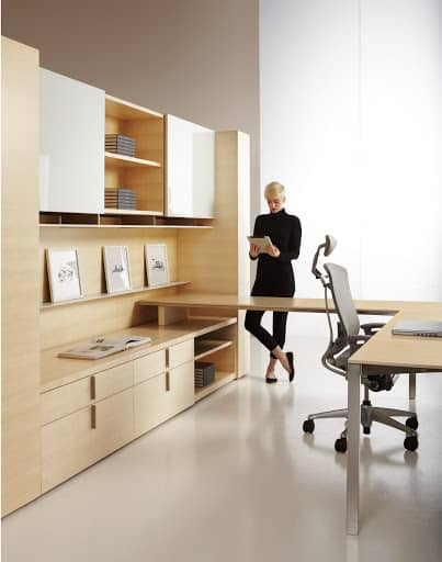 Dossier cabinets, storage, and L shaped desk
